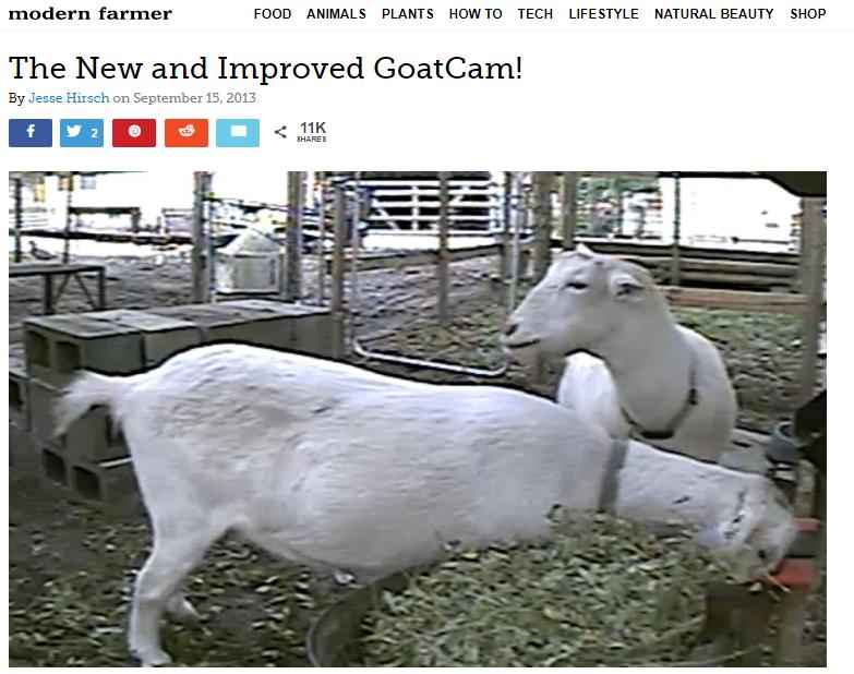 Goatcam