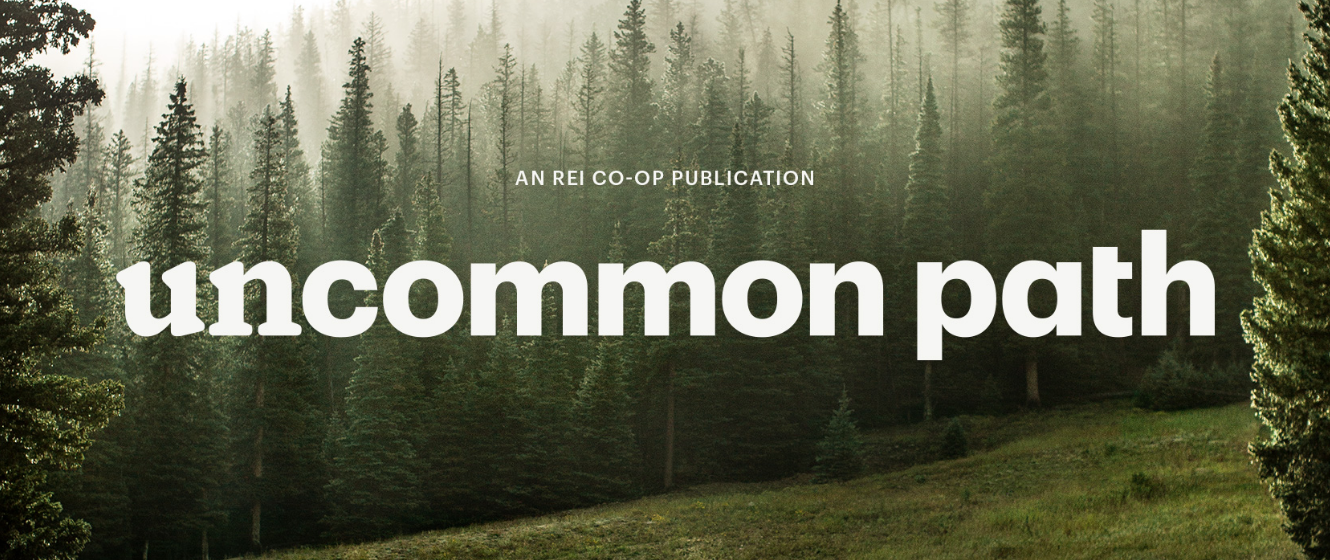 REI website Uncommon Path: foggy forrest