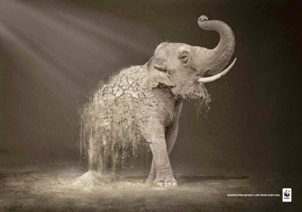 WWF ad - disappearing elephant
